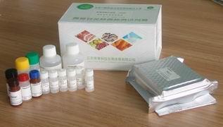 恩诺沙星酶联免疫欧宝体育试剂盒(组织、奶、蜂蜜、鸡蛋)