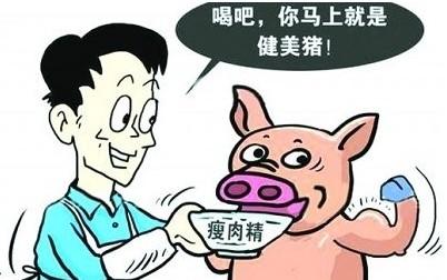 如何分辨猪肉中是否含有瘦肉精?