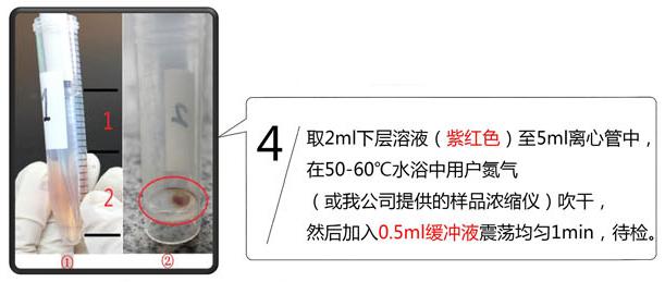 孔雀石绿检测卡使用方法