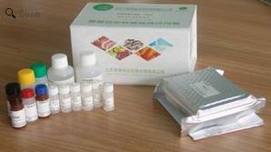 赭曲霉毒素A(Ochratoxin A)ELISA欧宝体育试剂盒